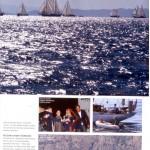 basinda_bodrumcup_2011_motorboat_2