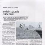 basinda_bodrumcup_1994_tempo 1994